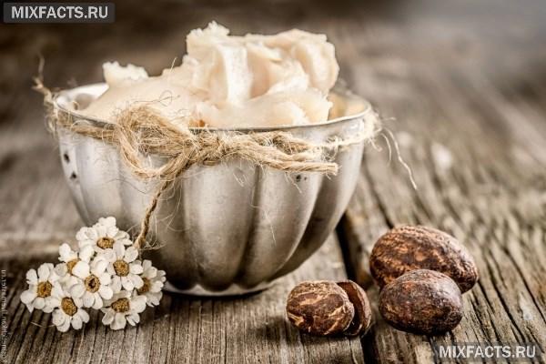 Масло бабассу – полезные свойства и способы применения