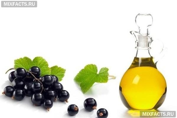 Масло черной смородины – свойства и применение в косметологии