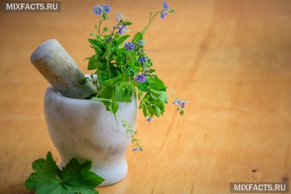 Противовоспалительные травы – как выбрать лучшую траву для эффективного лечения?