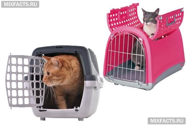 Какую переноску для кошки лучше выбрать – обращаем внимание на вид и размеры изделия