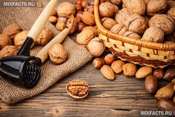 Сколько кедровых орехов можно съедать в день