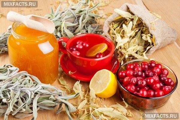 Клюква с медом полезные свойства и противопоказания