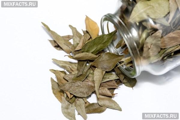 Как лечить суставы лавровым листом с желатином внутрисуставные инъекции в н тагиле