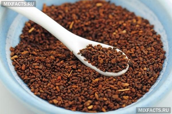 Применение корня цикория и рецепты на его основе