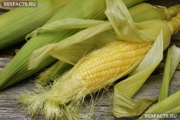 Кукурузные рыльца рецепт приготовления настоя диетические рецепты приготовления для мультиварки
