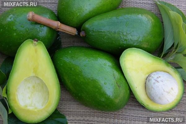 Масло авокадо: полезные свойства и применение в народной медицине и косметологии
