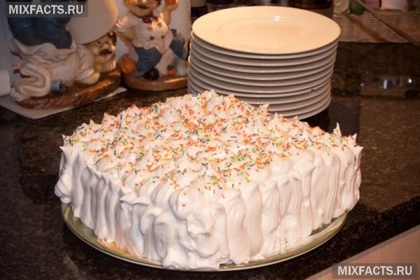 Tort Na Den Rozhdeniya Devochki Svoimi Rukami Recepty