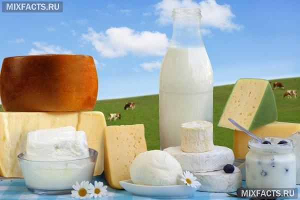 Кефир и йогурт: как выбрать «живой» продукт? Состав и сроки хранения. Натуральный йогурт что это