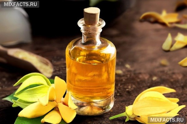 Эфирное масло иланг-иланг: свойства и применение
