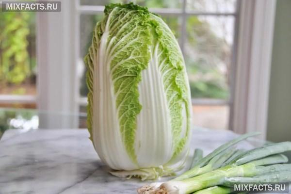 Виды капусты и ее польза для здоровья