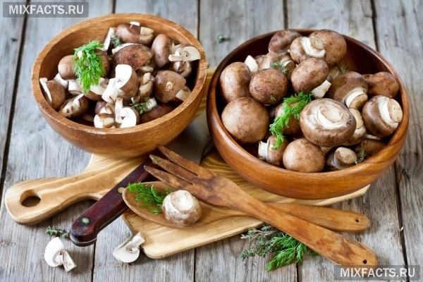Отравление грибами — через сколько появляются симптомы?