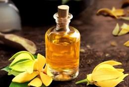 Масло иланг-иланг – полезные свойства, применение в косметологии и ароматерапии