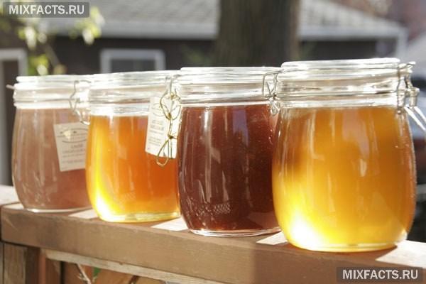 Какой мед полезнее весенний или летний. Какой мед лучше липовый или цветочный? Цветочные виды меда – самые целебные