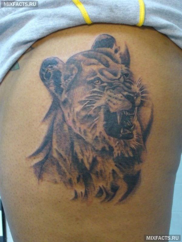 татуировка в виде льва на боку